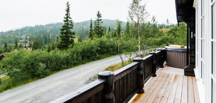 Medinės terasos lentos gera investicija. Lentos yra impregnuotos pušies arba iš sibiro maumedžio medžio.